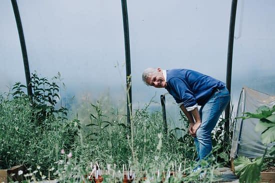 Dan Beech gardening